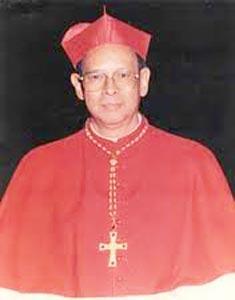 Julius Kardinal