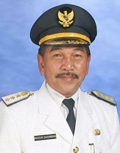 Maddin Sihombing